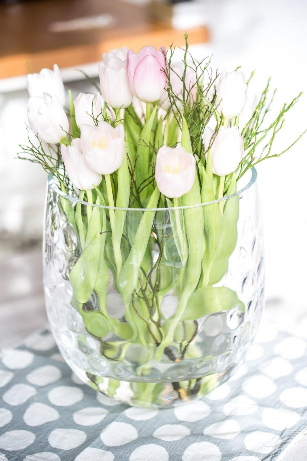 Wann Wachsen Tulpen Subjectagreespace