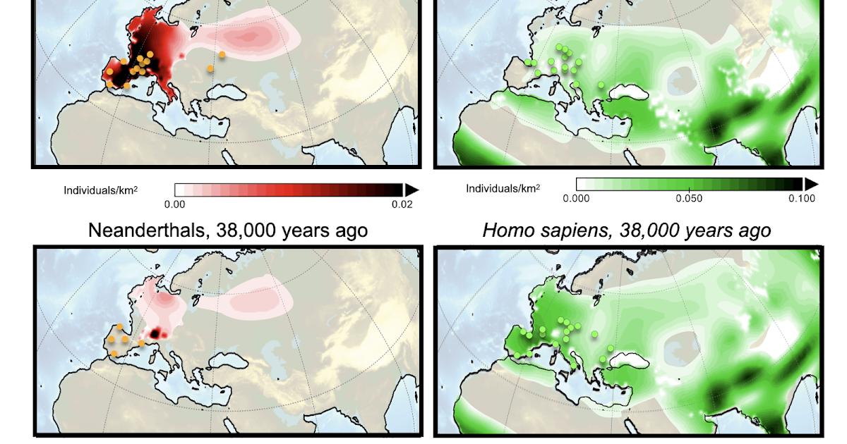 Simulaciones realizadas mediante un ordenador revelan la causa de la extinción de los neandertales: la competencia con el 'Homo sapiens'