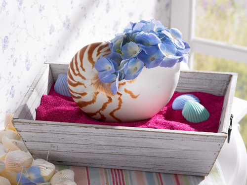 Mẹo vặt làm đẹp cho ngôi nhà thân yêu bằng sắc hoa xanh
