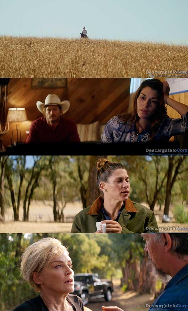 El Galope Salvaje (2017) HD 1080p Latino