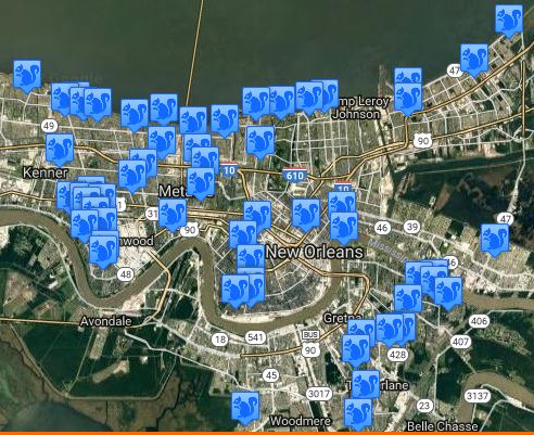 Image of: 100 Squirrel Control complaints - New Orleans Area