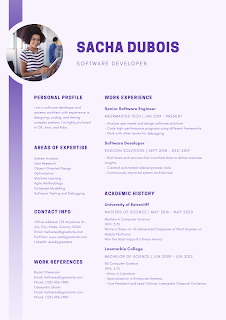 Basic Free Tips For Who Wants To Wright and Design a Professional Resume.
