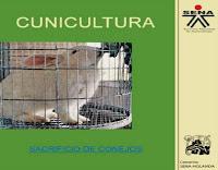 cunicultura-10-sacrificio-de-conejos