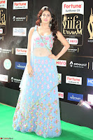 Amyra Dastur in Flower Print Choli Transparent Chunni at IIFA Utsavam Awards 46.JPG