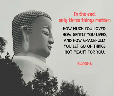Quotes About Life Lessons Learned