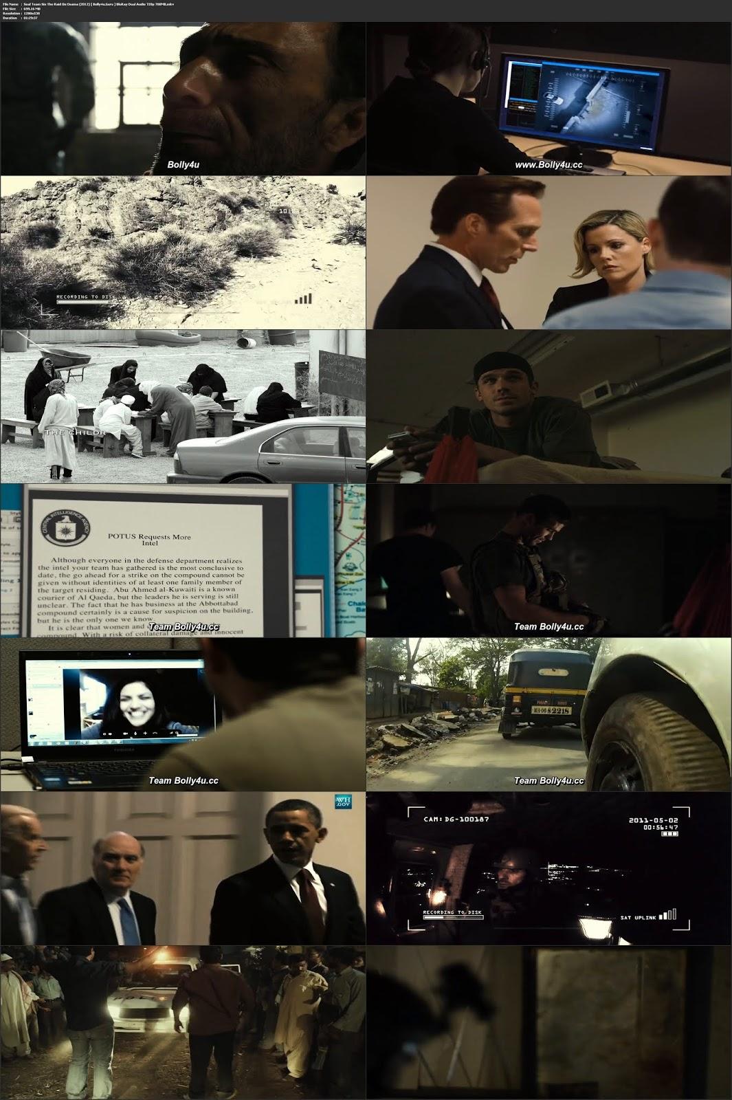Seal Team Six The Raid On Osama 2012 BluRay 300MB Hindi Dual Audio 480p Download