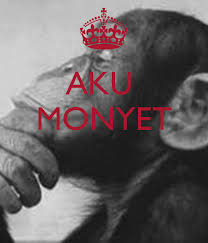 aku monyet