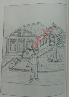 Contoh gambar tes psikotes gambar pohon, orang dan rumah lengkap dengan pembahasan