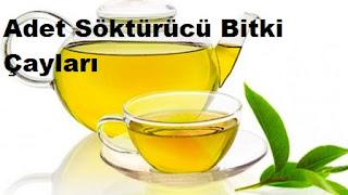 Adet Söktürücü Bitki Çayları Nelerdir?