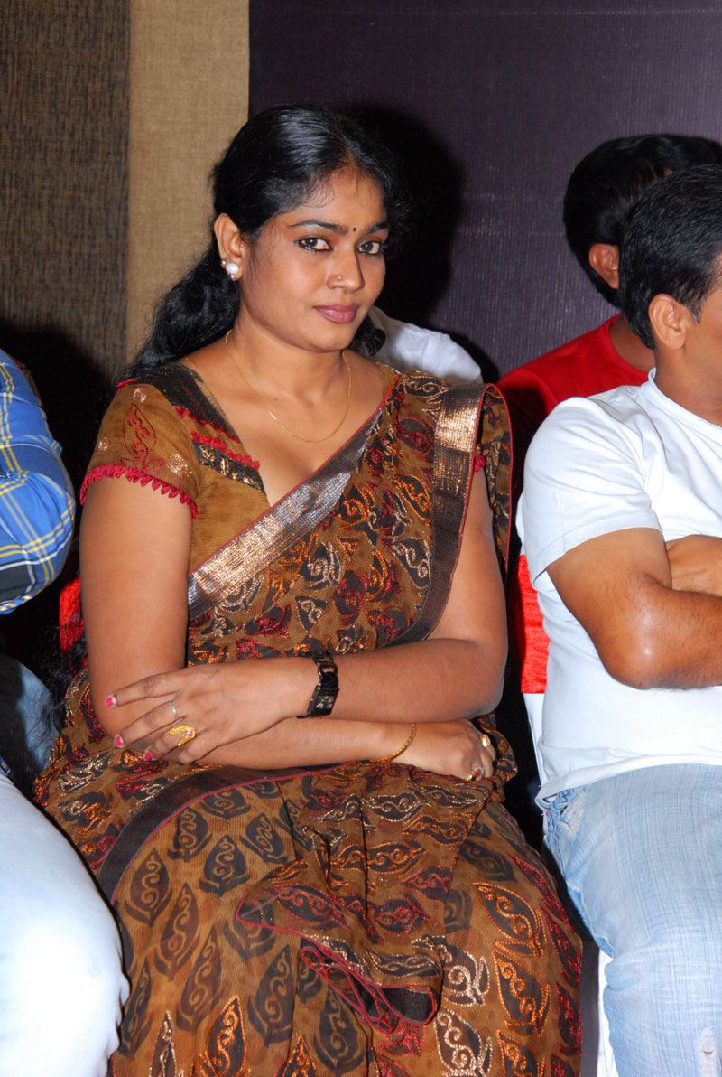 Jayavani Awesome Saree Stills  Jayavani Tight Navel In -3992
