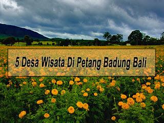 Inilah 5 Desa Wisata Di Kecamatan Petang Badung Bali