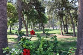 حدائق المنتزه