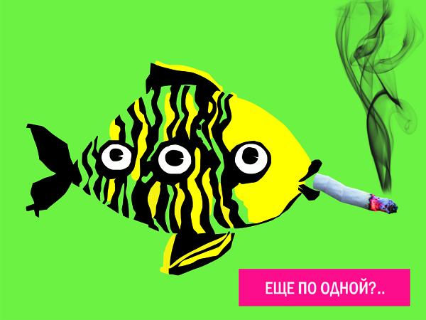 Идея современной экологической рекламы