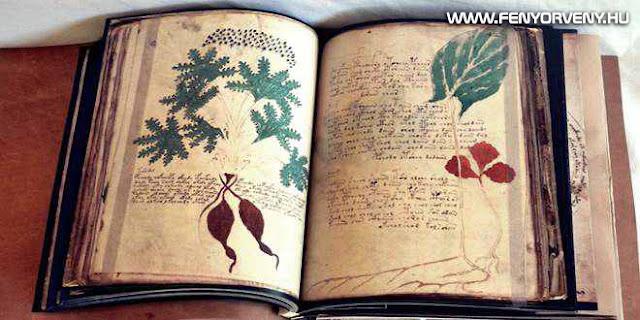voynich k%25C3%25A9zirat - A középkor legtitokzatosabb irománya, a Voynich-kézirat