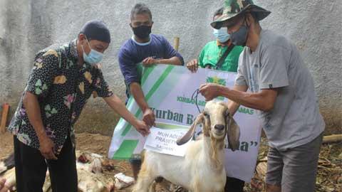 KSPPS BMT Binamas Purworejo Distribusikan Hewan Kurban ke 12 Lokasi