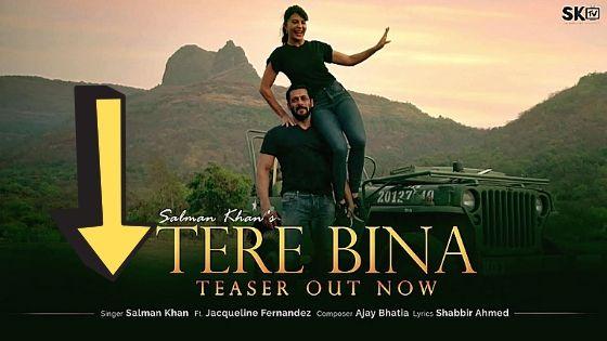 Salman Khan Tere Bina Song Teaser Out Now, Actor Put Maharashtra Police Logo in DP