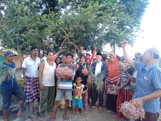 Sambangi Petani Bawang, H Arifin Janji Sejahterakan Nasib Petani