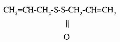 Thành phần hóa học Hành ta - Allium fistulosum - Nguyên liệu làm thuốc Chữa Cảm Sốt