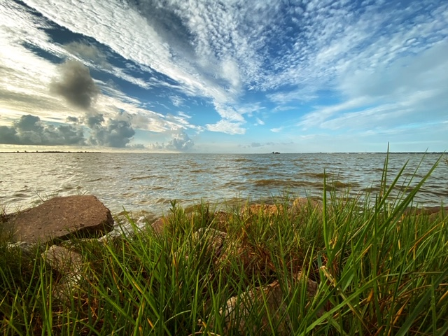 Nutrient Pollution: Solutions for the Indian River Lagoon