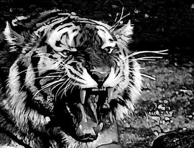 cara-mendapatkan-khodam-macan-putih-prabu-siliwangi-tanpa-puasa