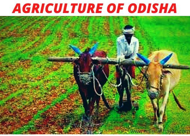 Agriculture of Odisha