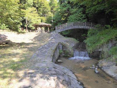 【交野市】サワガニを見つけた!新緑の6月・小川の清涼(源氏の滝周辺)