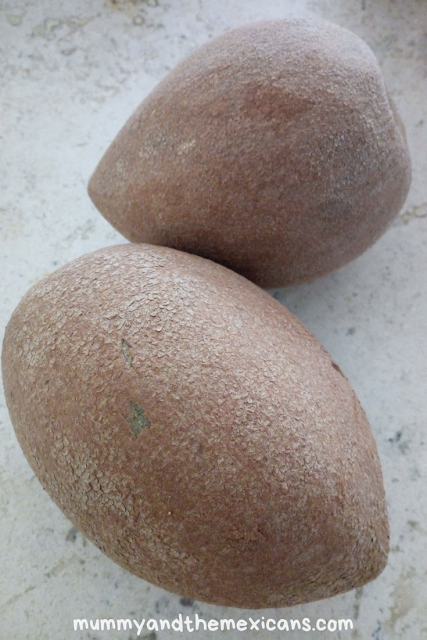 What Is Mamey Fruit And 4 Ways To Eat It - Image Shows Mamey Fruit With Grey-Brown Skin