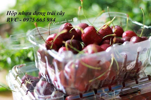 Nơi bán hộp nhựa đựng cherry