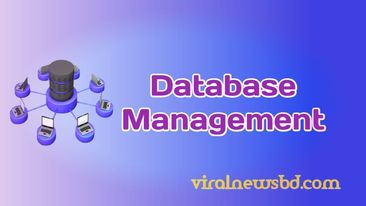 What is Database Management System