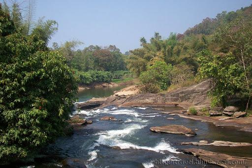 Vazhachal Forest Western Ghats