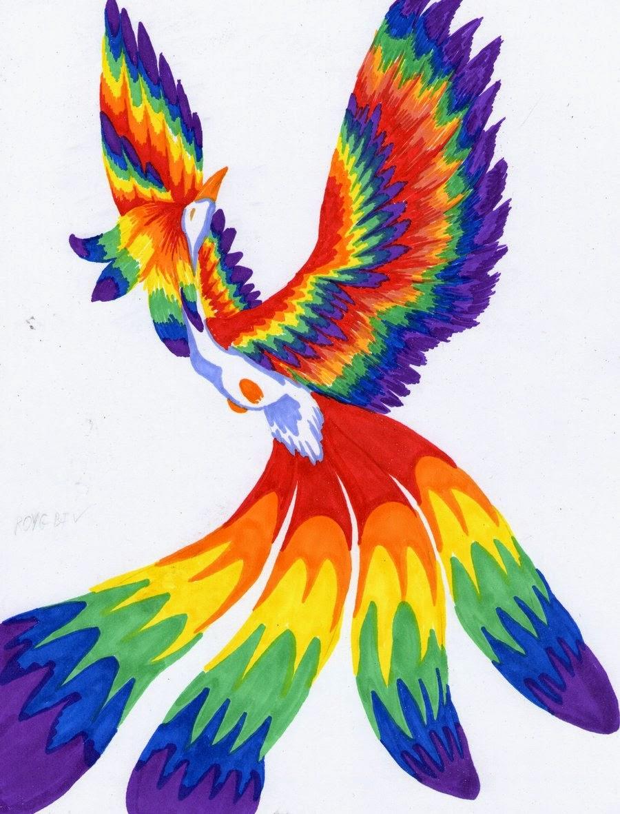 картинки радужных птиц красивых постеров