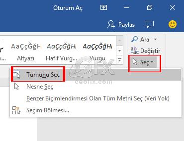 Word belgesi tümünü seç