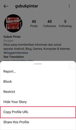 cara copy link akun instagram