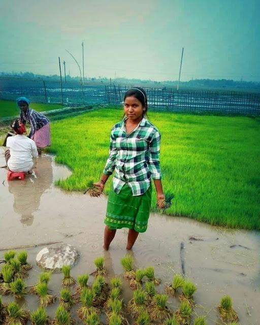 Assam tribal