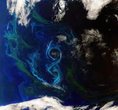 Fitoplankton terlihat dari angkasa