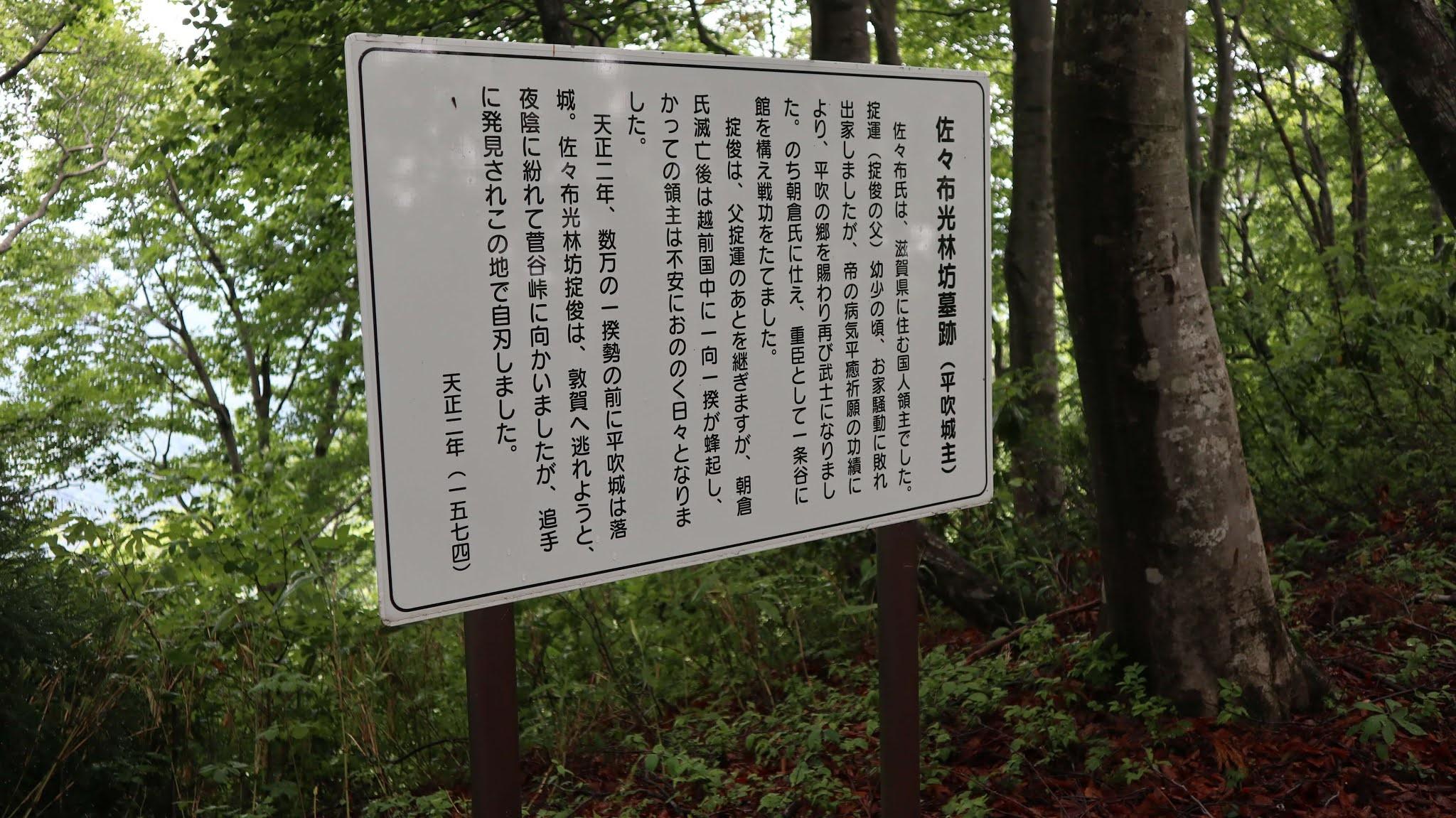 ホノケ山9