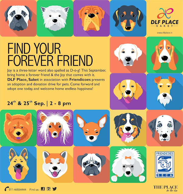 Find your forever friend @ DLF Place, Saket