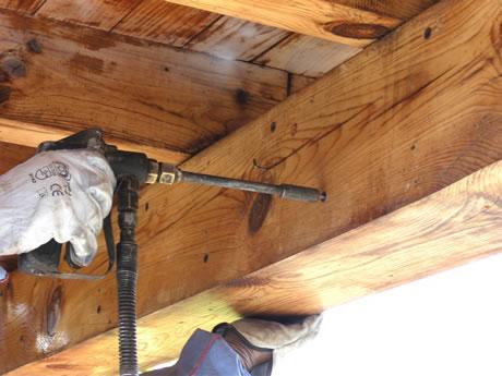 expertos tratamientos madera xilófagos