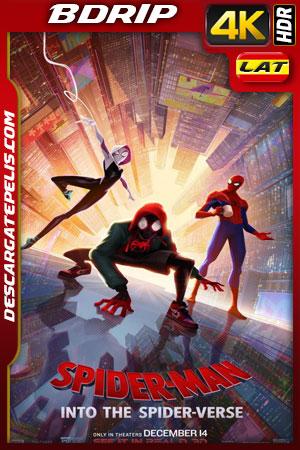 Spider-Man: Un nuevo universo (2018) 4k BDrip HDR Latino – Ingles