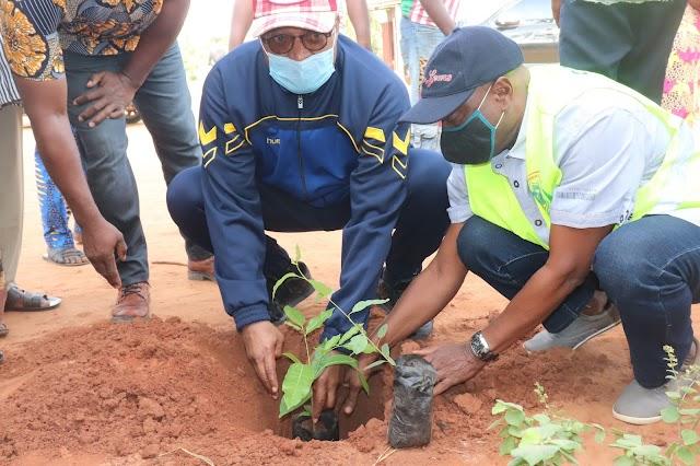 Journée de l'arbre : Jean-Pierre Fabre « veillera à ce que les plants mis en terre fassent ce pour quoi ils ont été mis à terre »