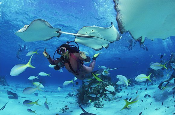 Diving Tioman An Amazing Trip For Divers And Nature Lovers