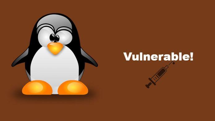 vulnerabilidades en linux 2019