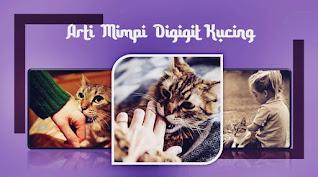 arti mimpi digigit kucing