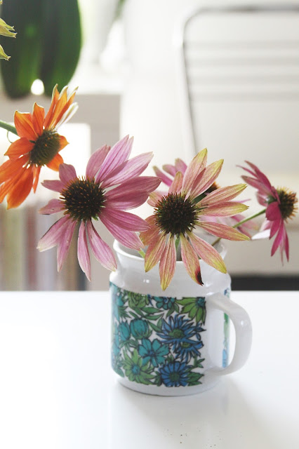 coneflowers, echinacea, vintage mug, flowers, Anne Butera, My Giant Strawberry