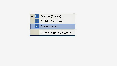 langue arabe pour xp sp3