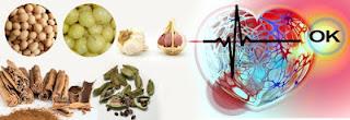 heart-blockage-ayurvedic-treatment-in-hindi, हार्ट- ब्लॉकेज -खोलने -का- कारगर -उपाय,  heart- blockage- ayurvedic- remedies, हार्ट- ब्लॉकेज- खोलने- के- उपाय