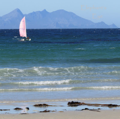 False Bay in June