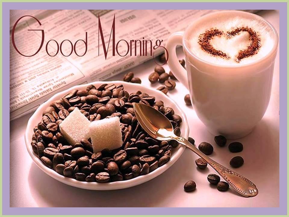new whatsapp images photography good morning good vali morning