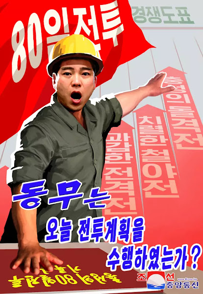 DPRK Poster for 80-Day Campaign