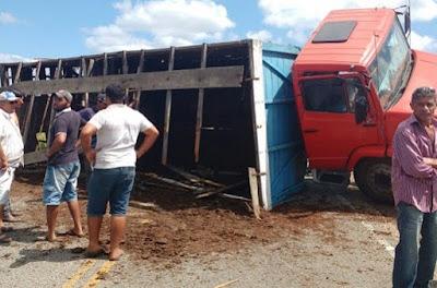 Caminhão carregado com bois tomba na estrada entre Prata e Ouro Velho